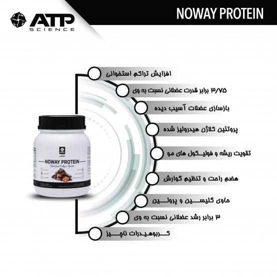 بهترین مکمل پروتئین