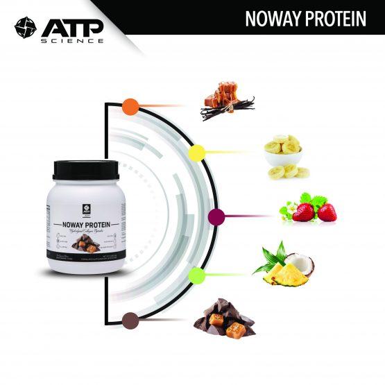 مکمل پروتئین در چند طعم